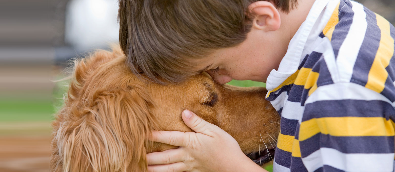 Helping A Child Get Over The Loss Of A Dog