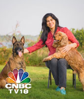 win friends and influence canines
